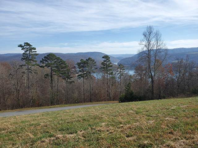 Lot 300 Marble Point Way, New Tazewell, TN 37825 (#1138928) :: Billy Houston Group