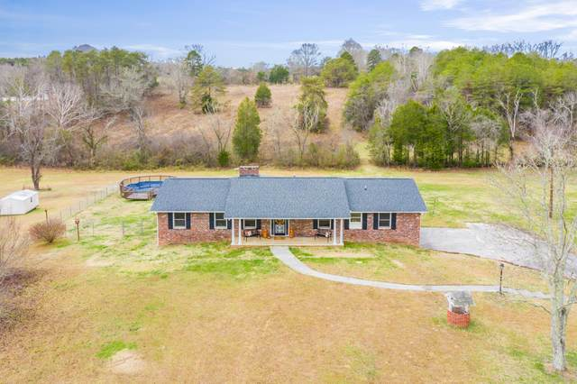 5317 Roberts Rd, Corryton, TN 37721 (#1139370) :: Shannon Foster Boline Group