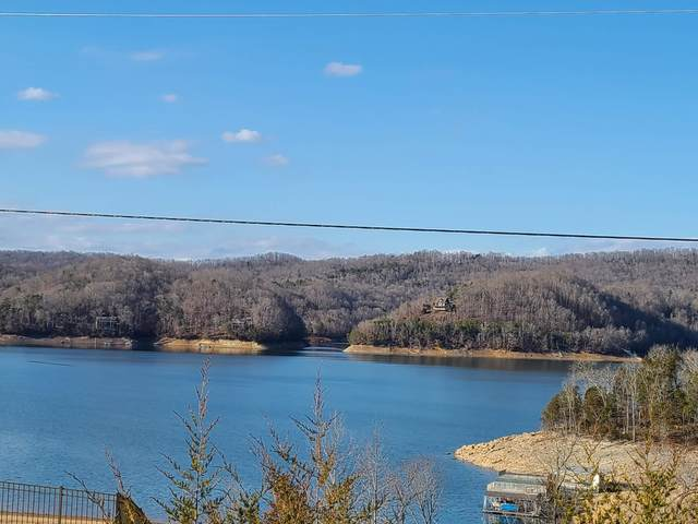 Hickory Pointe Lane, Maynardville, TN 37807 (#1139580) :: Billy Houston Group