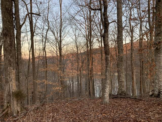 lot 840 Driftwood Court, New Tazewell, TN 37825 (#1139616) :: Tennessee Elite Realty