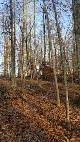 Lot 31 Dogwood Drive, Spring City, TN 37381 (#1139838) :: Tennessee Elite Realty
