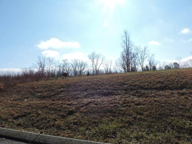 Hidden Forest Trail, Spring City, TN 37381 (#1139841) :: Billy Houston Group