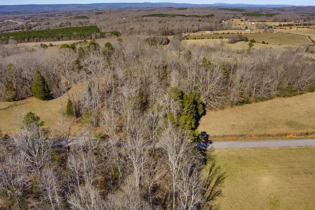 The Gates Drive Drive, Decatur, TN 37322 (#1140818) :: Cindy Kraus Group | Realty Executives Associates
