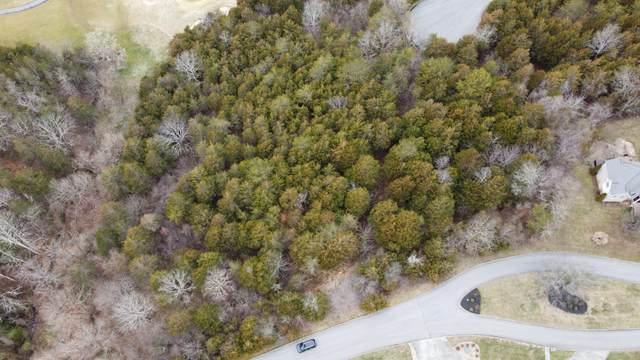 lot 181 Links Court, Tazewell, TN 37879 (#1141013) :: Billy Houston Group