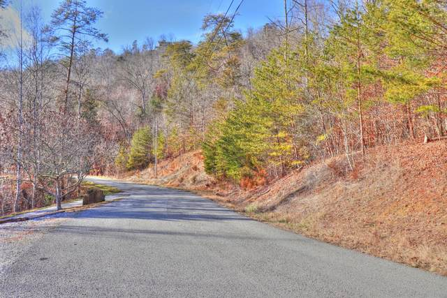 Lot 852 Landmark Drive, New Tazewell, TN 37825 (#1141677) :: Billy Houston Group