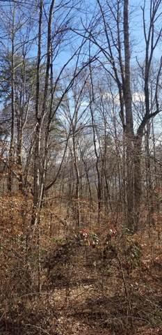 Timber Ridge Rd, Sharps Chapel, TN 37866 (#1142156) :: Billy Houston Group