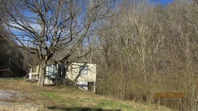757 Old Piney Rd, Maryville, TN 37803 (#1142237) :: Billy Houston Group
