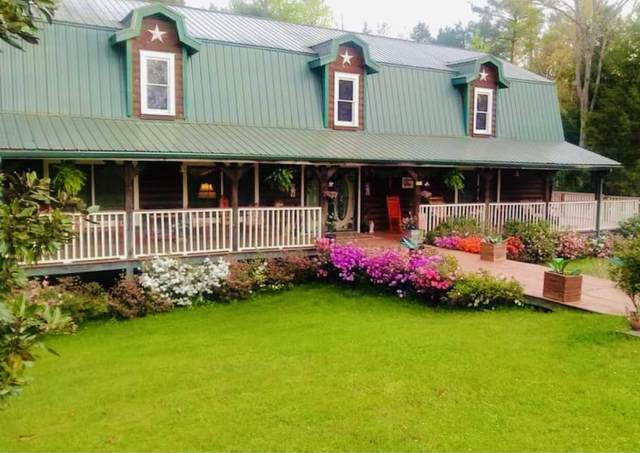 410 White Creek Loop, Deer Lodge, TN 37726 (#1142704) :: A+ Team
