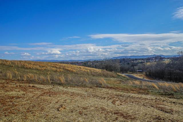 Lot 1 Farm Of The Smokies Way, Maryville, TN 37804 (#1143224) :: Realty Executives Associates