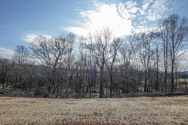 Lot 43 Mountain Vista Lane, Maryville, TN 37804 (#1143228) :: Realty Executives Associates
