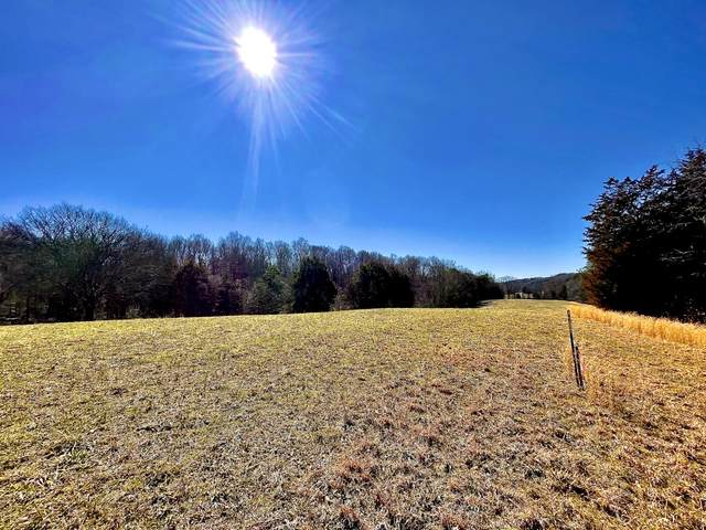 Stansberry Lot 5 Drive, New Market, TN 37820 (#1143576) :: Shannon Foster Boline Group