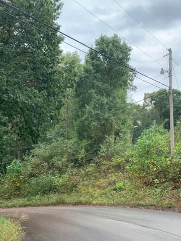 Mallard Baye Lot 161, Rutledge, TN 37861 (#1143707) :: Realty Executives Associates