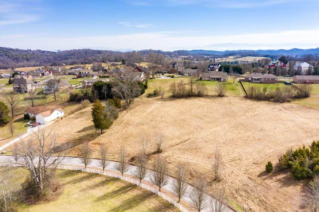 Lot 35 Broad River Lane, Sevierville, TN 37876 (#1143727) :: Billy Houston Group