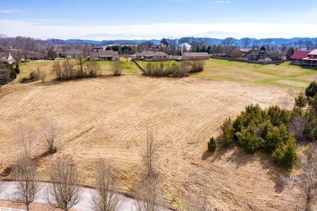 Lot 37 Broad River Lane, Sevierville, TN 37862 (#1143729) :: Billy Houston Group