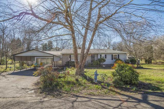 3204 Gibbs Drive, Knoxville, TN 37918 (#1144633) :: A+ Team