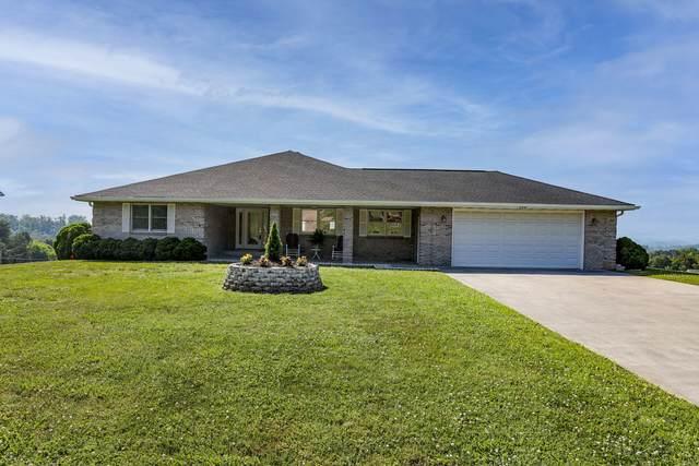 128 Skyline Drive, Dandridge, TN 37725 (#1145564) :: Billy Houston Group