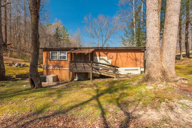 8415 Bell Campground Rd, Powell, TN 37849 (#1146185) :: Billy Houston Group