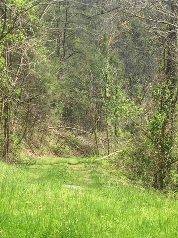 23.56 Acres Way, Sevierville, TN 37876 (#1146567) :: The Terrell-Drager Team