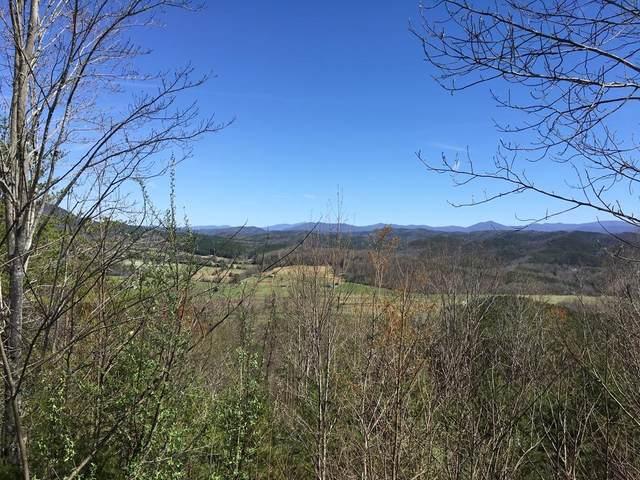 000 Highlands Bluff Rd, Tellico Plains, TN 37385 (#1147094) :: Adam Wilson Realty