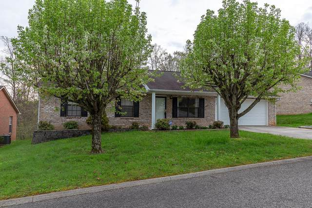 7479 Cotton Patch Rd, Corryton, TN 37721 (#1147171) :: Shannon Foster Boline Group