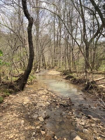 W S New River, huntsville, TN 37756 (#1147475) :: Realty Executives Associates