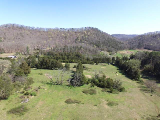 5325 Raccoon Valley Drive, Knoxville, TN 37938 (#1147909) :: Billy Houston Group