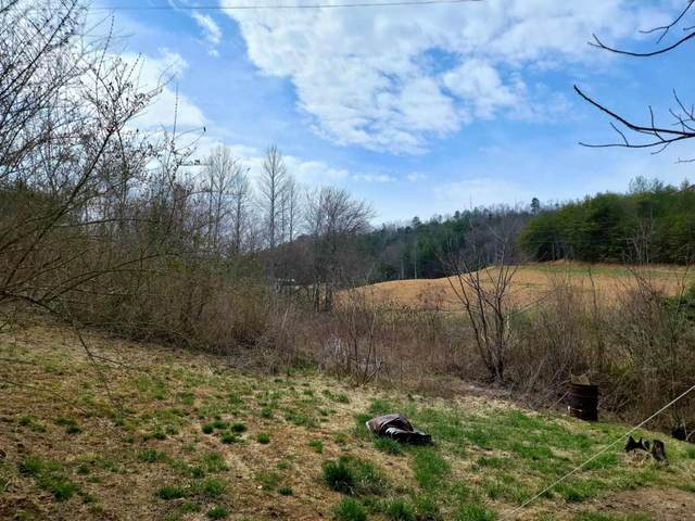 34.4 acres Highway 68, Tellico Plains, TN 37385 (#1148055) :: Shannon Foster Boline Group