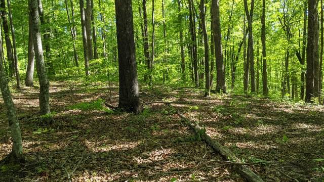 Star Point Rd, Jamestown, TN 38556 (#1148363) :: Tennessee Elite Realty