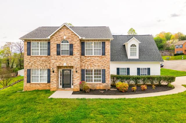 8611 Rum Hill Ln Lane, Knoxville, TN 37923 (#1148399) :: Billy Houston Group
