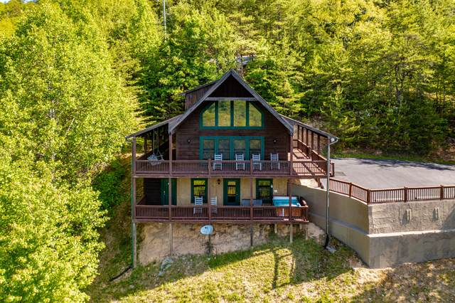 1339 Rocky Top Way, Townsend, TN 37882 (#1148484) :: JET Real Estate