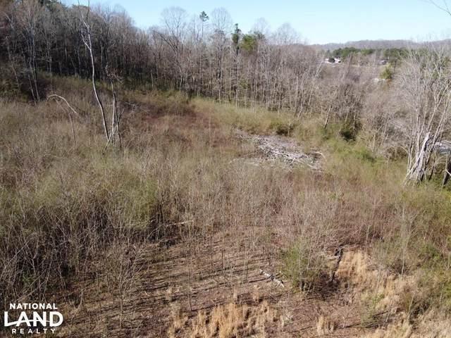 Valley Grove Lane, Knoxville, TN 37931 (#1148626) :: Adam Wilson Realty