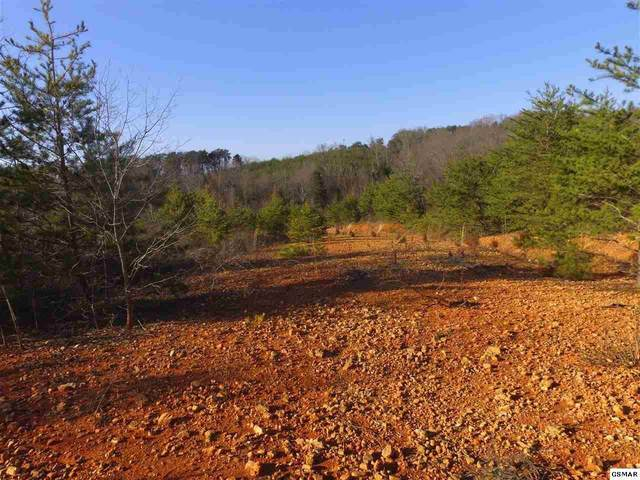 Piney Rd - Lots 2-5, Kodak, TN 37764 (#1148739) :: Tennessee Elite Realty