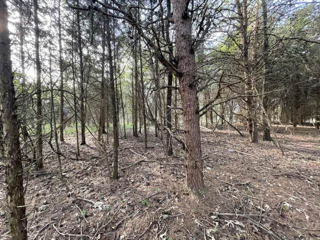 Lot 15 Gohi Trail, Vonore, TN 37885 (#1149049) :: Adam Wilson Realty