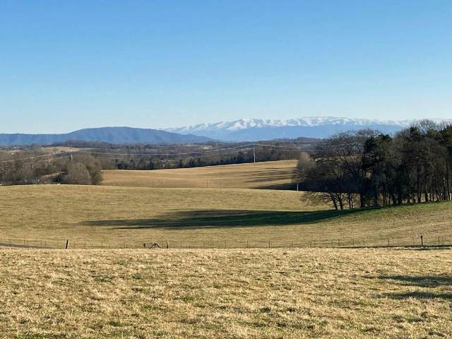 Meadow Road West  5.03 Acres, Greenback, TN 37742 (#1149720) :: Billy Houston Group