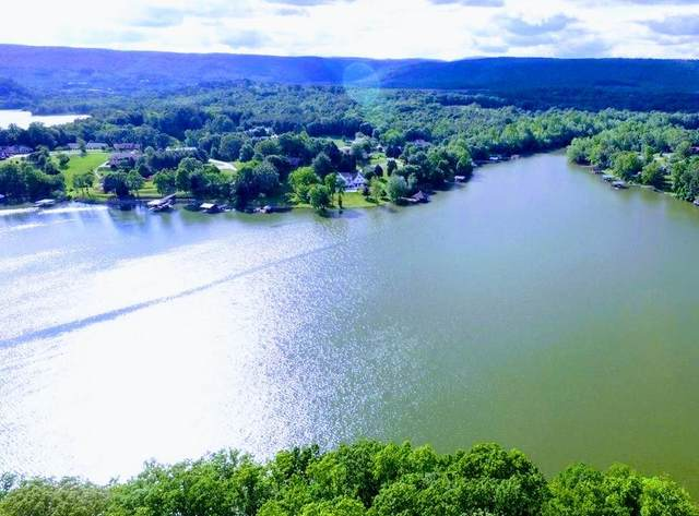 Spring Crossing Drive, Spring City, TN 37381 (#1149818) :: Cindy Kraus Group | Realty Executives Associates