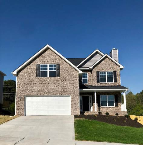 5807 Rain Cloud Rd, Knoxville, TN 37918 (#1149910) :: Billy Houston Group