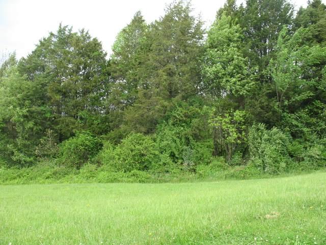 7615/7718 Twin Oak Lane, Corryton, TN 37721 (#1150084) :: Billy Houston Group