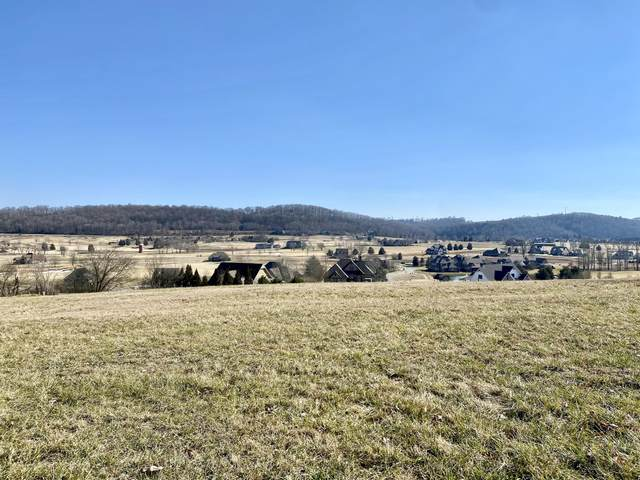 2912 Persimmon Ridge, Loudon, TN 37774 (#1150805) :: Cindy Kraus Group | Realty Executives Associates