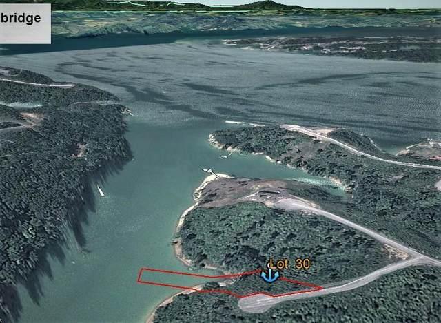 Lot 30 Stone Shore Way, Dandridge, TN 37725 (#1150868) :: Adam Wilson Realty