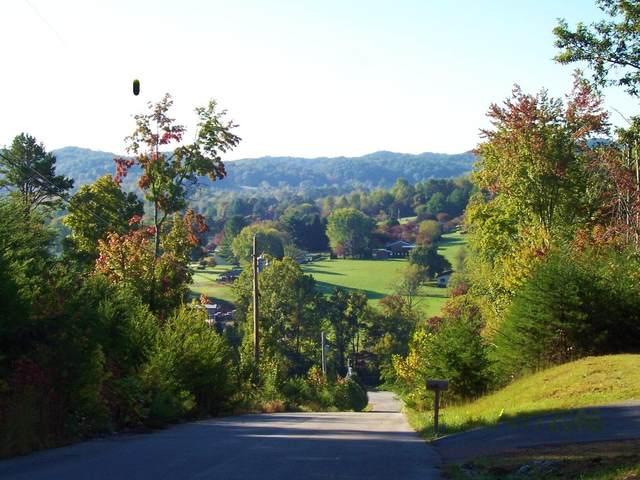 Vistana Lane, Rockwood, TN 37854 (#1152347) :: Cindy Kraus Group | Realty Executives Associates