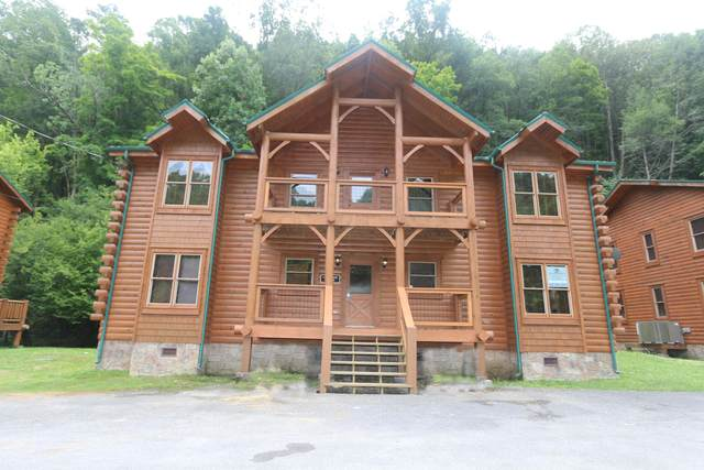 311 Caney Creek Rd, Pigeon Forge, TN 37863 (#1153751) :: Shannon Foster Boline Group