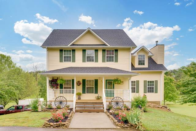 850 Kings Hills Blvd, Pigeon Forge, TN 37863 (#1154685) :: Shannon Foster Boline Group