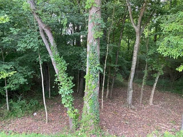 183 Dudala Way, Loudon, TN 37774 (#1154852) :: Shannon Foster Boline Group