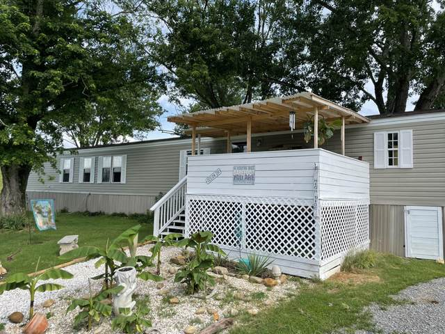390 E Chapman Rd, LaFollette, TN 37766 (#1155890) :: JET Real Estate