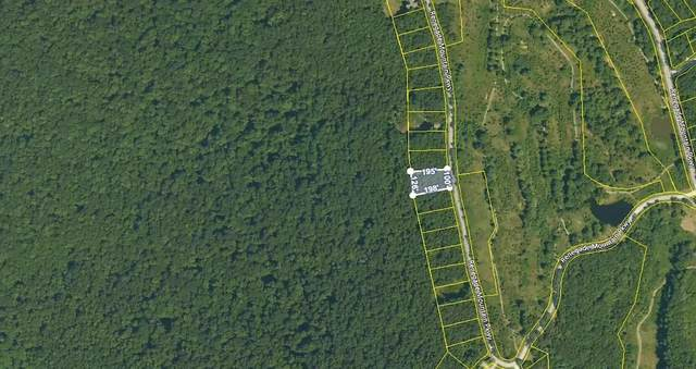 Lot 239 Renegade Mountain Pkwy, Crab Orchard, TN 37723 (#1155980) :: Billy Houston Group