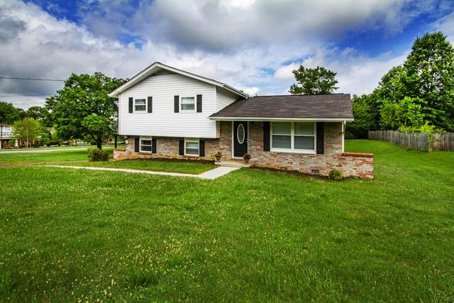11059 Roane Drive, Knoxville, TN 37934 (#1156158) :: Catrina Foster Group