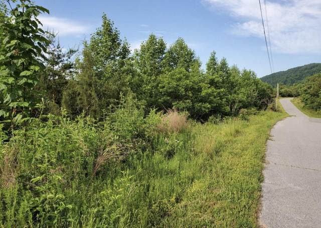 Wildcat Hollow Road Rd, New Tazewell, TN 37825 (#1156861) :: A+ Team