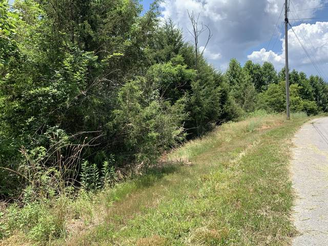560 Whistle Valley Road Rd, New Tazewell, TN 37825 (#1156980) :: A+ Team