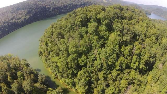 Landmark Drive, New Tazewell, TN 37825 (#1157212) :: JET Real Estate