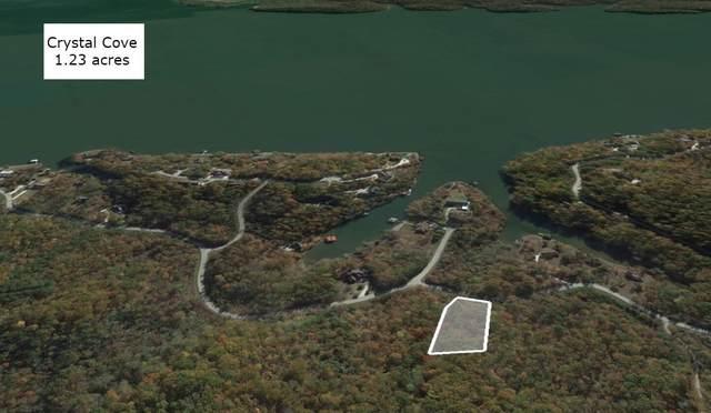 127 Bluegreen Way, Rockwood, TN 37854 (#1157835) :: Tennessee Elite Realty